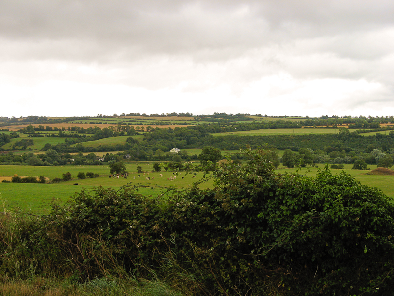 The Irish Countryside in County Meath.