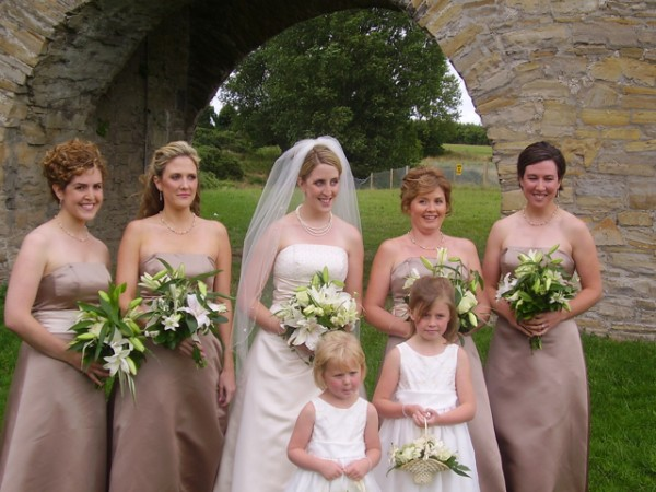 The wedding party at Trim Castle.