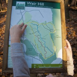 Eoin pointing our position on the Weir Hill Trail Map