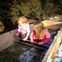 Addison and Elizabeth helping me put together our new cedar raised bed.