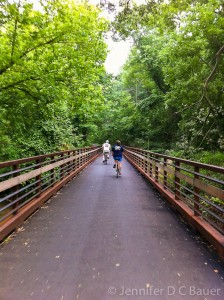 Biking along the Swamp Rabbit Trail in Greenville, S.C.