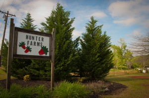 Hunter Farms in South Carolina