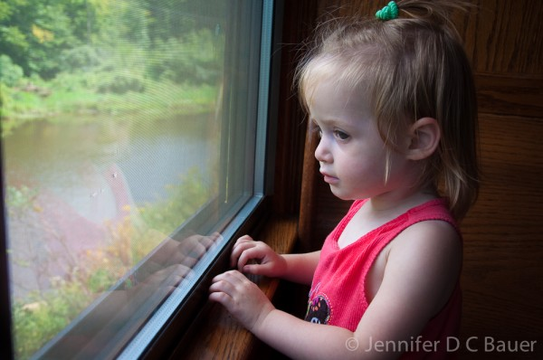 Addie checking out the views on the Conway Scenic Railroad.