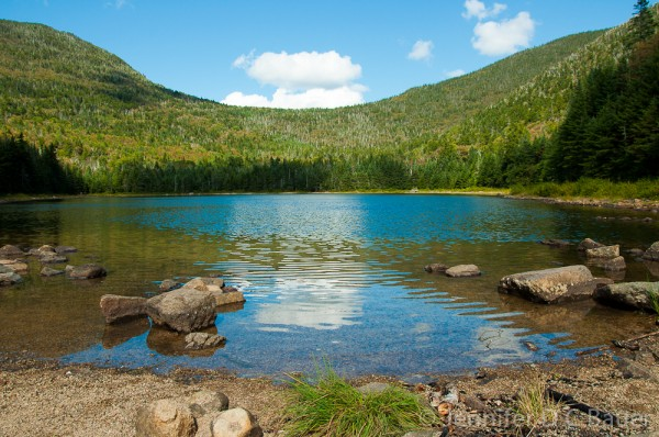 East Pond in the White Mountain National Forest.
