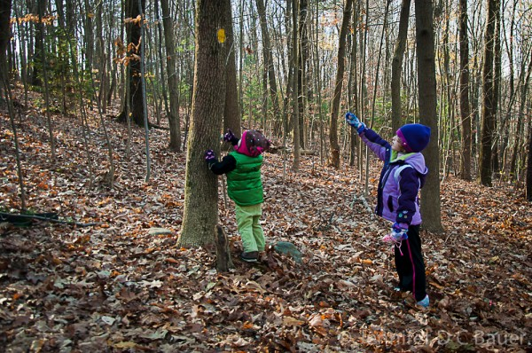 Addie and Eva finding a trail marker on Weir Hill in North Andover, MA.