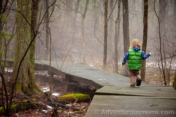 Addie walking along a boardwalk in the Hammond Reservation in Andover, MA.