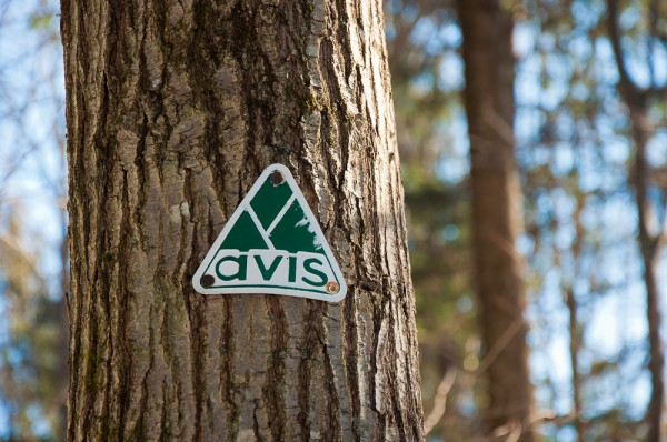 AVIS Trail Marker at the Amy Gordon Taft Reservation, Andover, MA