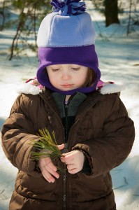 Addison examining pine needles at the Taft Reservation in Andover, MA