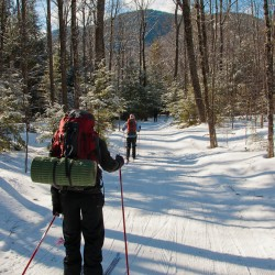 X-Country skiing at Bear Notch in Bartlett, NH.