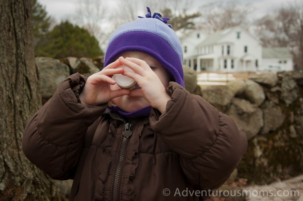 Addie chugging some sap after collecting it from a maple tree at Appleton Farms in Ipswich, MA