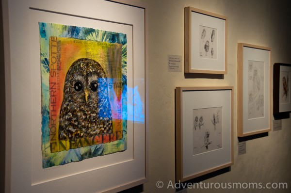 "The ""Only Owls"" Exhibit at the Museum of American Bird Art at Mass Audubon"