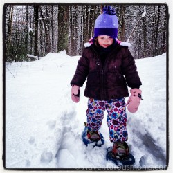 Snowshoeing at Harold Parker State Forest