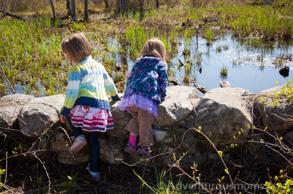 Addie and Elizabeth checking out turtles at the Ipswich River Wildlife Sanctuary
