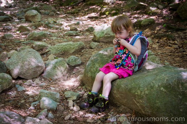 Addie taking a water break while hiking Mt. Major in Alton Bay, NH