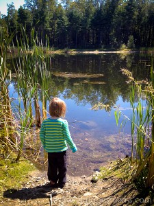 Addie checking out the fish in the pond at the end of the Nashua River Rail Trail