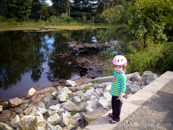 Groton School Pond along the Nashua River Rail Trail
