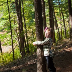 Addie tree hugging at Wilkinson Reservation in Andover, MA