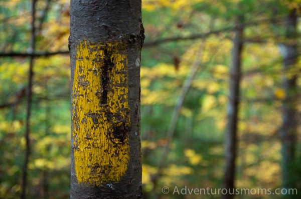 Trail marker for Old Bridle Path on West Rattlesnake Mountain in Holderness, NH