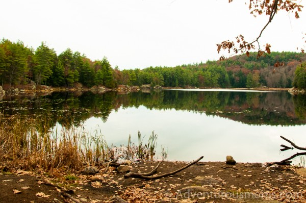 Pawtuckaway State Park, New Hampshire