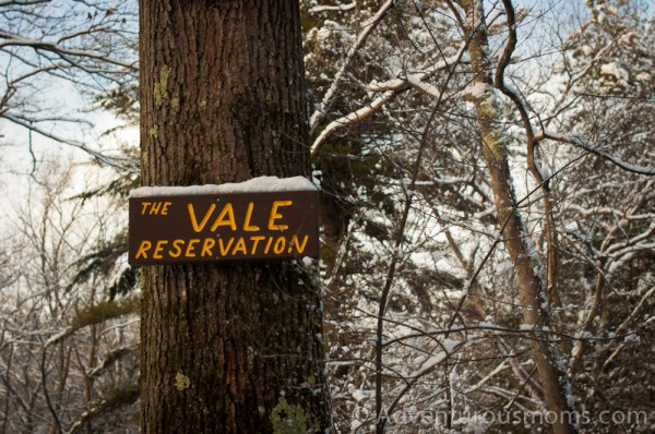 Vale Reservation, Andover, MA-19