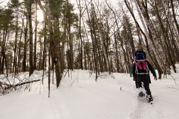 Heading up Whortle-Berry Hill in the Lowell-Dracut-Tyngsborough State Forest