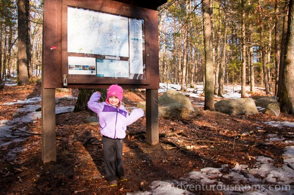 Lowell State Forest Lowell MA