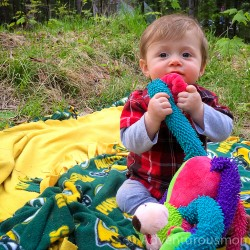 Camping at Dolly Copp Campground in Gorham, NH