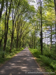 Biking the Bruce Freeman Rail Trail in MA