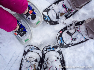 Green Friday Hike: Weir Hill Snowshoeing