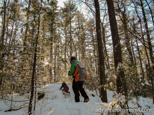 Harold Parker State Forest Snowshoeing