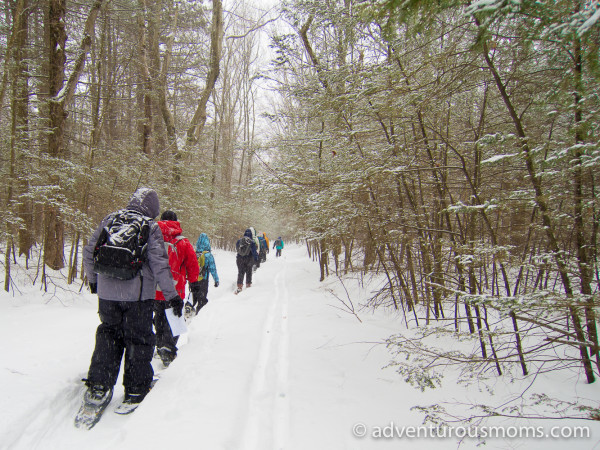 Noble View Snowshoeing